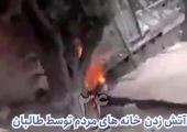 ادعای طالبان درباره تشکیل دولت در افغانستان + عکس