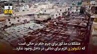 گذر پوست ایرانی به دباغخانه نمیافتد! + فیلم