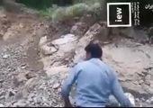 بازداشت دو جوان به جرم حمله به پلنگ!