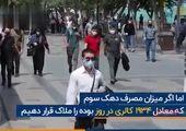 هزینه های مواد غذایی برای هر ایرانی در ماه چقدر است؟ + فیلم