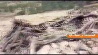 اولین فیلم از خسارت های زلزله امروز خوزستان