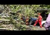 وحشت از موجود کودک نما در جاده !+ فیلم
