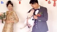 دردسر عجیب سگ عروس! + فیلم